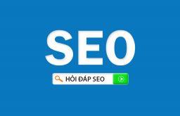 Xin hướng dẫn SEO cho Website mới?